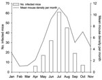 Thumbnail of Monthly number of lymphocytic choriomeningitis virus–positive animals and mean rodent density per month (pooled data), northern Italy, 2000–2006.