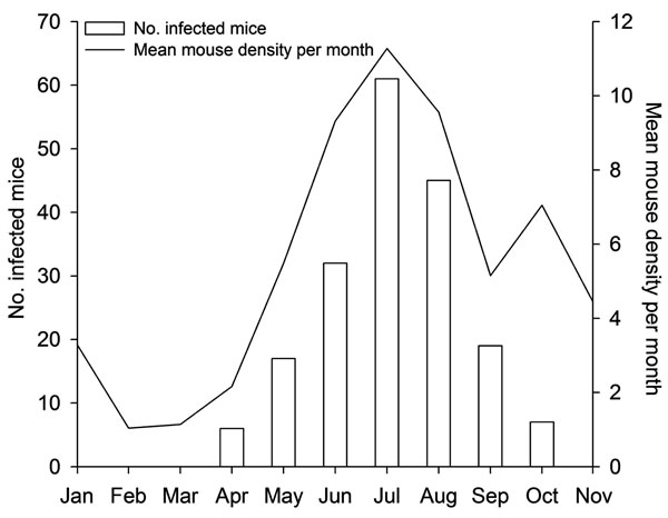 Monthly number of lymphocytic choriomeningitis virus–positive animals and mean rodent density per month (pooled data), northern Italy, 2000–2006.