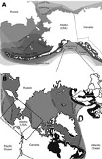 Thumbnail of Distribution of Arctic and sub-Arctic pinnipeds in relation to Arctic ice coverage representing a unique area where distribution ranges of multiple seal species overlap (7,8). A) North Pacific Ocean region showing the range of the northern sea otter (Enhydra lutris kenyoni) in Alaska, its population stock delineations, and sample collection locations for the study. 1, Kachemak Bay; 2, Kodiak Archipelago; 3, South Alaska Peninsula; 4, Fox Island; seal species ranges overlap. This ove