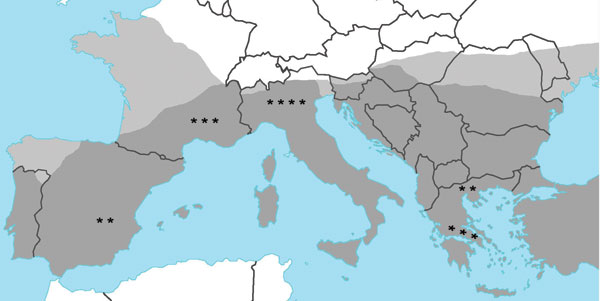 Reported cases of leishmaniasis in patients with autoimmune rheumatic diseases in Europe, indicated by stars (1 case from Israel not shown). Dark gray shading, distribution of leishmaniasis; light gray shading, distribution of leishmaniasis vector sandfly. Source: World Health Organization, 2004 (www.who.int/tdr/svc/publications/tdr-research-publications/swg-report-leishmaniasis).