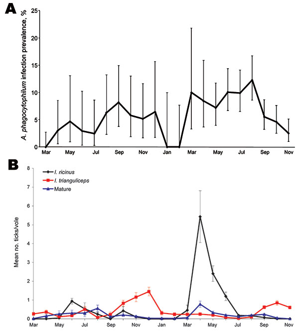 Prevalence of Anaplasma phagocytophilum infection in field voles (A) and of infestation of Ixodes ricinus tick larvae (black line), I. trianguliceps tick larvae (red line), and I. ricinus/I. trianguliceps adult females and nymphs (blue line) on field voles (B) during March 2004–November 2005. Error bars represent exact binomial 95% confidence intervals (A) or SEM (B).