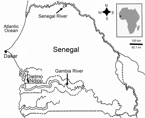 Location of Dielmo and Ndiop in Senegal, Africa. Plus-symbol lines define the Senegal frontiers. The number of fecal samples positive for Tropheryma whipplei and number tested for children in each age group was as follows: Dielmo, 1/13 from children <8 months of age, 5/9 from children 8–24 months of age, and 19/54 from children 2–10 years; Ndiop, 1/5 for children <8 months of age, 5/18 from children 8–24 months of age, and 27/51 from children 2–10 years of age.