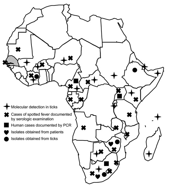 Distribution of Rickettsia africae in the African continent and serologic evidence of spotted fevers in humans. Gray shading indicates location of Senegal.
