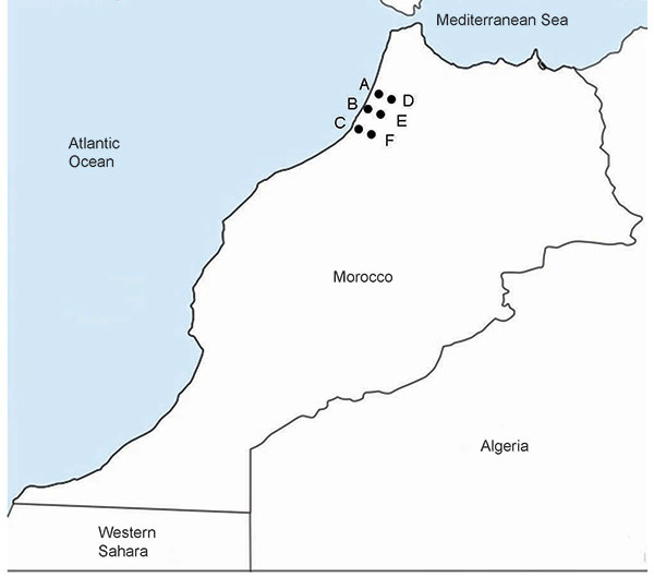 Locations in the Kenitra District of Morocco where tick-borne relapsing fever was diagnosed. A, Sidi Mohamed Lahmar; B, Had Ouled Jelloum; C, Idrissi Kenitra; D, Lalla Mimouna; E, Mnasra; F, Sidi Taybi.