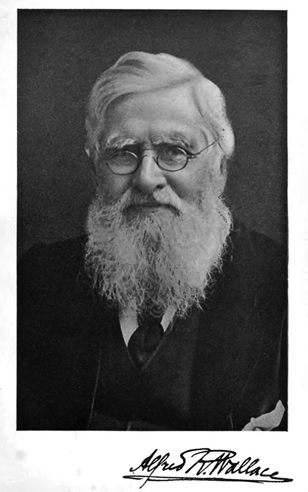Alfred Russel Wallace (1823–1913). Perhaps best remembered today in history of science as the codiscoverer of the principle of natural selection, Wallace also played a prominent role in the antivaccination movement in late 19th century England.