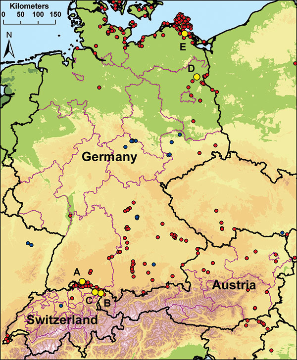 Locations of sentinel duck flocks at 5 locations in Germany, Switzerland, and Austria. A–C) Sites at Lake Constance: Radolfzell, Germany (A); Bregenz-Thal, Austria (B); and Altenrhein, Switzerland (C). D–E) Additional sentinel stations at Lake Felchow, Brandenburg, Germany (D), and Isle of Koos, Mecklenburg–Western Pomerania, Germany (E). Yellow dots mark the location of sentinel stations. Red dots mark detections of highly pathogenic avian influenza virus (HPAIV) (H5N1) in dead wild birds in 20
