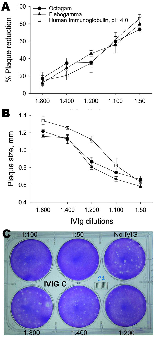 Neutralization of avian influenza virus A (H5N1) by intravenous immunoglobulin (IVIg) preparations measured by percentage reduction in plaque number (A) and plaque size (B). Monolayers of MDCK cells were infected with virus and overlaid with agar containing various concentrations of IVIg. After 2 days, plaques were detected by staining with crystal violet. Shown is a sample of viral plaques with agar overlay containing different dilutions (1:50–1:800) of Human Immunoglobulin, pH 4.0, (Harbin Seq