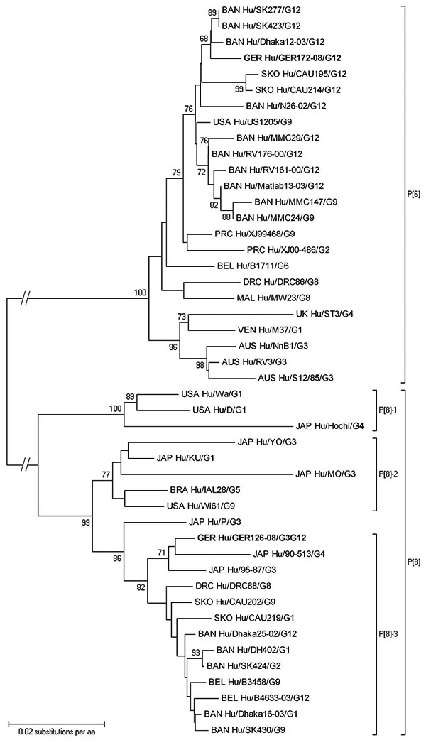Phylogenetic dendrogram of viral protein 4 (VP4) P[6] and P[8] rotaviruses at the amino acid level. Bootstraps values (1,000 replicates) >65% are shown. The strain name is prefixed by the country of origin (AUS, Australia; BRA, Brazil; BAN, Bangladesh; BEL, Belgium; DRC, Democratic Republic of Congo; GER, Germany; JAP, Japan; MAL, Malawi; PRC, People's Republic of China; SKO, South Korea; UK, United Kingdom; USA, United States of America; VEN, Venezuela) as well as the viral host (Hu, human)