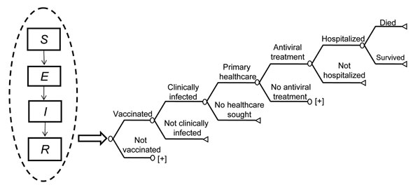 Schematic of hybrid transmission and decision analytic economic model. [+] indicates a cloned subtree with the same structure as the branch above. In sensitivity analysis, the probabilities of healthcare utilization and death were independent of each other but dependent on the probability of clinical infection. We assumed those with serious complications would seek primary healthcare. SEIR, susceptible, exposed, infected, removed.