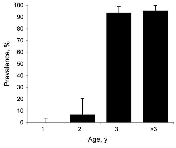 Results of ELISA to detect bluetongue virus (BTV) viral protein 7 in 200 serum samples collected from red deer, Spain. Results from yearlings were negative; results from adults showed an age-increasing trend of contact with BTV. Bars represent 95% confidence intervals for prevalence (binomial exact, Clopper-Pearson).