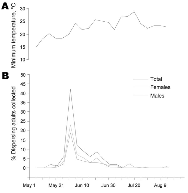 Temporal pattern of adult Triatoma rubida insects collected in metropolitan Tucson, Arizona, USA, May–August, 2006. A) Average minimum daily temperature recorded in 2006 during the period shown (data obtained from www.wrh.noaa.gov/twc/climate/reports.php). B) Percentages of all adults (n = 134), males (n = 52), and females (n = 82) collected during the period, in 5-day intervals (e.g., the percentage of insects collected during May 15–19 is represented on May 17). Information about sex or collec