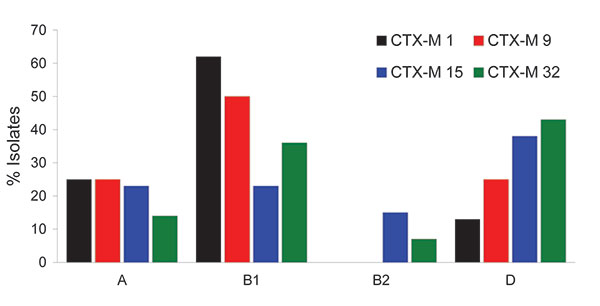 Distribution of isolates positive for cefotaximase, by phylogenetics group. Vertical axis indicates the percentage for each CTX-M determinant.