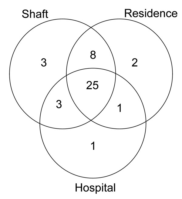 Venn diagram of number of potential contacts by type among patients in the largest multidrug-resistant tuberculosis (MDR TB) cluster, South Africa, 2003–2005. Each circle represents potential places of contact: shaft, mine shaft (work); residence, place of residence; hospital, hospitalization at the same time as another MDR TB case-patient.