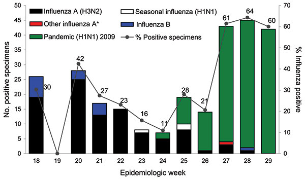 Influenza-positive test results for surveillance samples obtained at the emergency department, Tan Tock Seng Hospital, Singapore, May 3–July 25, 2009. An epidemiologic week starts on a Sunday and ends on a Saturday (e.g., week 18 started on May 3 and week 29 on July 19). *Undetermined influenza A subtypes.