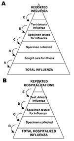 Thumbnail of Schematic of the steps involved in adjusting counts of reported cases of pandemic (H1N1) 2009 to estimate total cases.