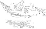 Thumbnail of Location of districts in Central Java, Indonesia, where ducks and in-contact chickens were monitored bimonthly for avian influenza (H5) during March 2007–March 2008.