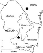 Thumbnail of Southern Texas and 4 states in northeastern Mexico. The filled circle in southern Texas indicates the locality in which Catarina virus is enzootic. The star in San Luis Potosí indicates the location of the study site (23°49′5′′N, 100°49′54′′W). Antibody (immunoglobulin G) to Whitewater Arroyo virus previously was found in white-toothed woodrats (Neotoma leucodon), a Mexican woodrat (N. mexicana), and deer mice (Peromyscus spp.) captured in Nuevo León; white-throated woodrats (N. alb