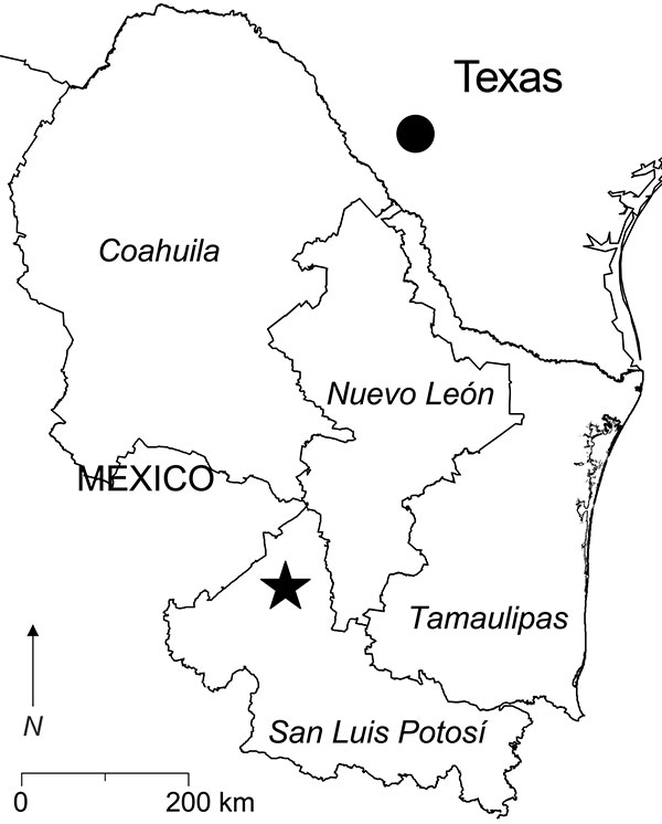 Southern Texas and 4 states in northeastern Mexico. The filled circle in southern Texas indicates the locality in which Catarina virus is enzootic. The star in San Luis Potosí indicates the location of the study site (23°49′5′′N, 100°49′54′′W). Antibody (immunoglobulin G) to Whitewater Arroyo virus previously was found in white-toothed woodrats (Neotoma leucodon), a Mexican woodrat (N. mexicana), and deer mice (Peromyscus spp.) captured in Nuevo León; white-throated woodrats (N. albigula) and wh