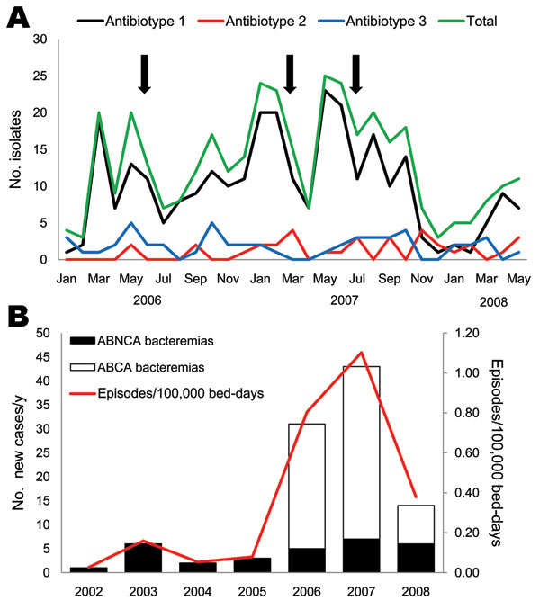 Temporal distribution of patients with Acinetobacter baumannii infections, Spain. A) Patients colonized/infected with A. baumannii classified by antibiotype. Arrows indicate times of intensification of infection control measures. The medical–surgical intensive care unit at Octubre University Hospital, Madrid, Spain, was refurbished in July 2007. B) Annual incidence of A. baumannii bacteremia. ABCA, A. baumannii clone A or AbH12O-A2; ABNCA: A. baumannii nonclone A.
