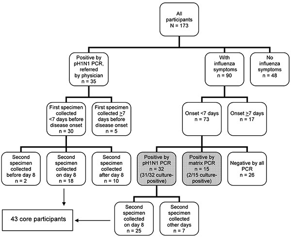 Flowchart of characteristics of 173 participants in study of shedding of pandemic (H1N1) 2009 virus, Quebec City, Quebec, Canada, May 27–July 10, 2009.