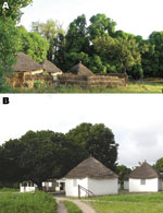 Thumbnail of A) Dielmo village in Senegal. B) Health and clinical research station in Dielmo, where a longitudinal prospective study for long-term investigation of host–parasite associations has been conducted since 1990.