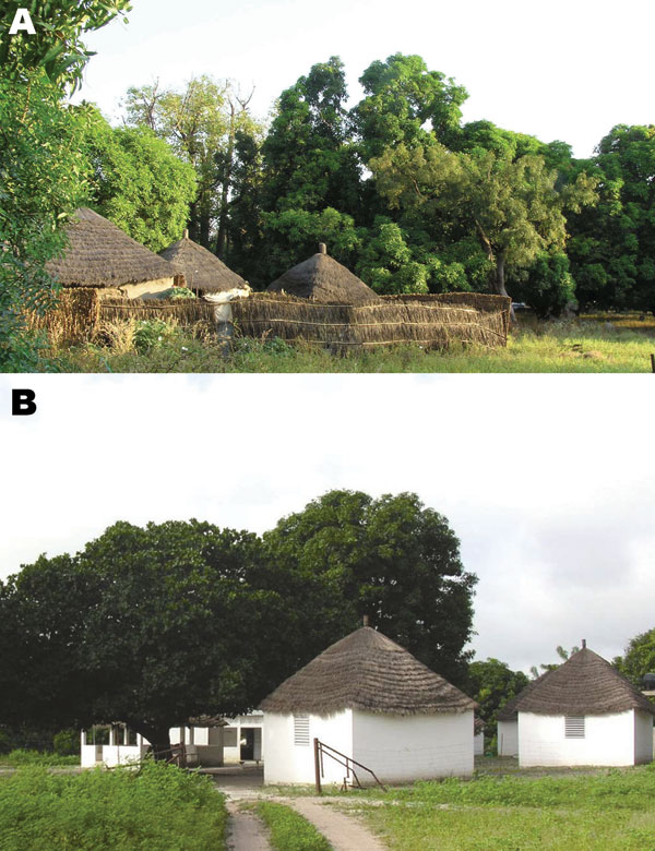 A) Dielmo village in Senegal. B) Health and clinical research station in Dielmo, where a longitudinal prospective study for long-term investigation of host–parasite associations has been conducted since 1990.
