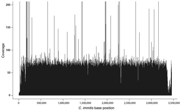 Example coverage plot of sequenced genome of Coccidioides immitis. Plot shows base coverage (y-axis) of supercontig 6 from isolate from patient Z, who had coccidioidomycosis. Average depth of coverage for this supercontig was 48.63× over 3,385,806 bases (x-axis) for a total of 164,650,400 bases sequenced.
