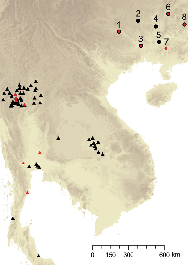 Spatial distribution of sampling sites for Penicillium marneffei, Guangxi Province, People's Republic of China. 1, Bose; 2, Hechi; 3, Nanning; 4, Liuzhou; 5, Guigang; 6, Guiling; 7, Luchan; 8, Hezhou; Black signifies origin of human-associated isolates, and red signifies origin of bamboo rat–associated isolates; both types were found in some sites.