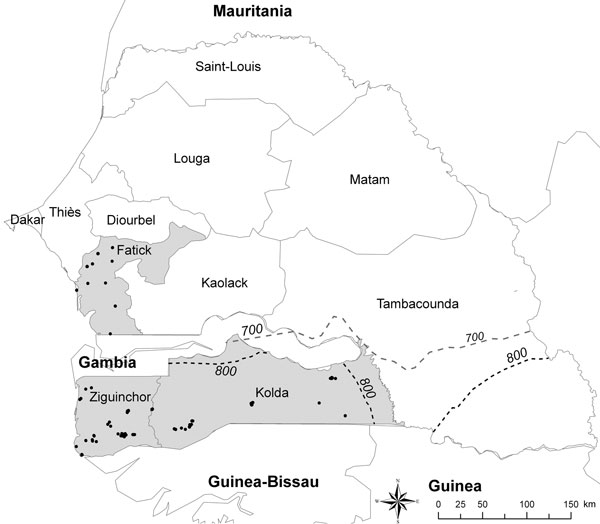 Sampled villages (black dots) in the 3 main regions of Senegal for pig production, Fatick, Ziguinchor, and Kolda (gray shading). Dashed lines indicate the 700 mm (gray) and 800 mm (black) rainfall isohyets for 2006. The southern limit range of Ornithodoros sonrai tick distribution (750 mm) can be estimated.