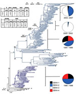 Thumbnail of Evolution of dengue virus (DENV) serotype 2, Puerto Rico. Maximum likelihood phylogeny of the 140 Puerto Rico and 20 international isolates of DENV-2 (see number of isolates by year below). Names of clades (I, II, and III) and subclades (IA, IB) are shown at the base of their respective branches on the phylogeny tree. Clade II (dark blue) circulated during 1986–1996 and clade I (light blue) during 1994–2007. Subclade IA and clade III represent foreign, transient reintroductions thro