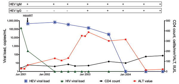 Longitudinal description of blood hepatitis E virus (HEV) serology, HEV RNA, alanine aminotransferase (ALT) levels, HIV RNA, and CD4 count in patient with chronic HEV infection, positive results by real-time PCR for HEV RNA, and seroconversion to immunoglobulin (Ig) G. HAART, highly active antiretroviral therapy.
