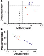 Thumbnail of A) Scattergraph of antibody ratio and denaturation ratio obtained from each sample in Table 2, showing discrimination of scrapie, CH1641, CH1641-like, and bovine spongiform encephalopathy (BSE) samples. The antibody ratio is the SAF84/P4 ratio of the chemiluminescence signal relative to the SAF84/P4 ratio of the control scrapie loaded in each blot (Technical Appendix). The denaturation ratio, obtained from the SAF84 blot, is the ratio between the chemiluminescence signal with 3.5 mo