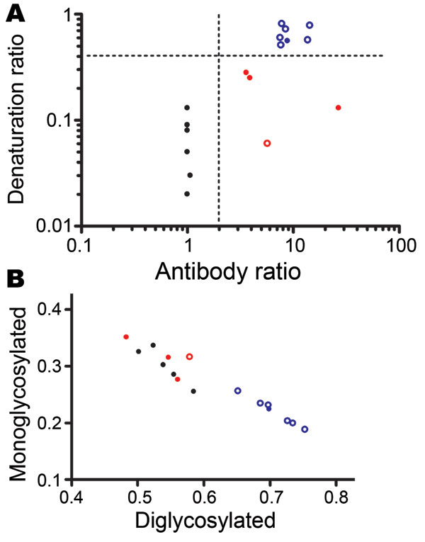 A) Scattergraph of antibody ratio and denaturation ratio obtained from each sample in Table 2, showing discrimination of scrapie, CH1641, CH1641-like, and bovine spongiform encephalopathy (BSE) samples. The antibody ratio is the SAF84/P4 ratio of the chemiluminescence signal relative to the SAF84/P4 ratio of the control scrapie loaded in each blot (Technical Appendix). The denaturation ratio, obtained from the SAF84 blot, is the ratio between the chemiluminescence signal with 3.5 mol/L and that