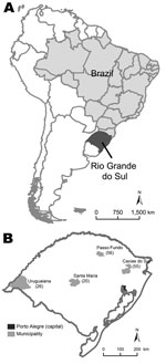 Thumbnail of Location of Rio Grande do Sul, Brazil (A) and distribution of 157 patients with pandemic (H1N1) 2009 in 4 cities in this state (B). Values in parentheses are numbers of patients.
