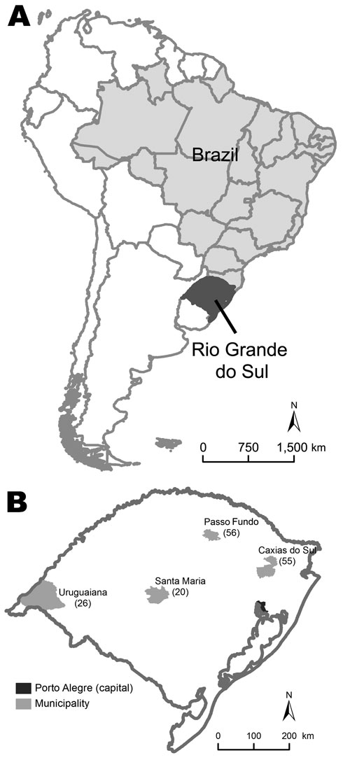 Location of Rio Grande do Sul, Brazil (A) and distribution of 157 patients with pandemic (H1N1) 2009 in 4 cities in this state (B). Values in parentheses are numbers of patients.