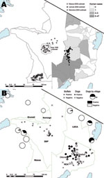 Thumbnail of Anthrax cases and exposure to anthrax in the study area, Tanzania. Blue areas indicate lakes. A) Location of wildlife carcasses during anthrax outbreaks. Shaded areas indicate regions where human anthrax cases were reported during 1995–2008. Exact locations of carcasses obtained during the Sopa 1998 outbreak were not available; open circles indicate area where 549 probable cases and 67 suspected cases were detected. For the Seronera 2003 outbreak, locations of cases were randomized