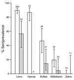 Thumbnail of Seroprevalence of anthrax in sampled wildlife populations from Serengeti National Park (white bars) and Ngorongoro Crater (gray bars), Tanzania, 1996–2009. Error bars indicate 95% confidence intervals. Sample sizes used to calculate seroprevalence are indicated above the bars. Hyenas were not sampled in Ngorongoro Crater. Seropositive zebras were not detected; error bars indicate 95% confidence intervals based on a binomial distribution of the sample size and the seropositivity rang