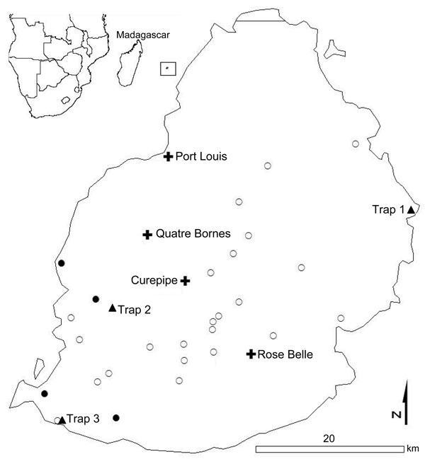 Location of farms where Rusa deer were sampled (open circles), herds with orbivirus-seropositive deer (closed circles), biting midge collection sites (triangles), and main cities (crosses) in Mauritius. Most (99%) Culicoides spp. midges were trapped at sites 1 and 3. Inset show location of Mauritius (in square) in relation to Africa and Madagascar.