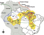 Thumbnail of Geographic dispersion of Oropouche virus (OROV) genotypes in South America during 1955–2009 based on data from the N gene. Yellow shading, coverage area of OROV in Brazil; red line, dispersion route for genotype I; blue line, dispersion route for genotype II; green line, dispersion route for genotype III; black dot, genotype IV. AC, Acre; AP, Amapá; AM, Amazonas; MA, Maranhão; MG, Minas Gerais; PA, Pará; RO, Rondônia, TO, Tocantins.