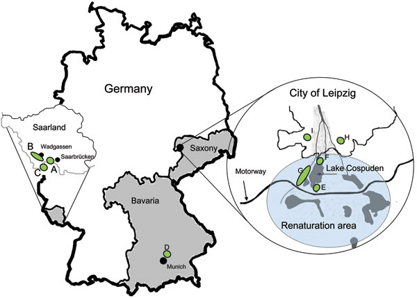 Tick sampling sites in Germany during 2008 and 2009 (green shading): Saarland, sites A–C, along the border with France (sampled March–September 2008). Bavaria, site D (sampled April and September 2009). Saxony, sites E–G, in Lake Cospuden renatured brown coal surface-mining area (blue shading); site H, renatured waste disposal site (sampled April and September/October 2009); and site I, game park (sampled in April 2009). Federal states of Saarland, Bavaria, and Saxony are shaded in gray.