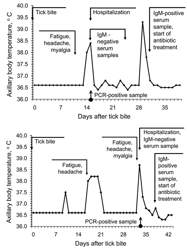 Examples of relapsing fever episodes in 2 patients with Borrelia miyamotoi infection. Arrows indicate the timing of tick bite, hospital admission, PCR testing, anti-borreliae immunoglobulin (Ig) M testing, and initiation of antimicrobial drug therapy.