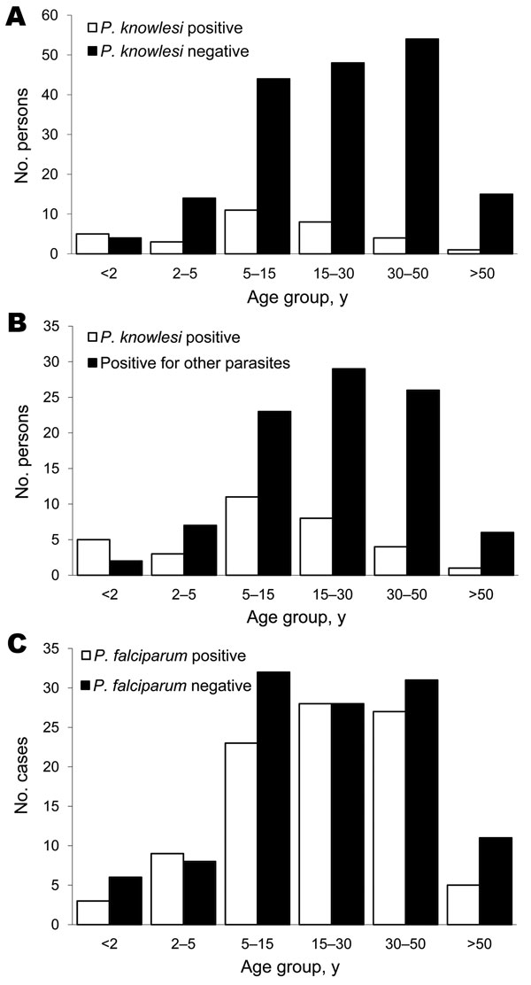 Age analysis of persons tested for Plasmodium knowlesi infection, Khanh Phu, Vietnam. A) Age groups of P. knowlesi–positive persons (n = 32; mean age 15.8 y) compared with P. knowlesi–negative persons (n = 179; mean age 26.2 y); p = 0.0004 (significant) by 2-tailed t test with unequal variance. B) Age groups of P. knowlesi–positive persons compared with ages of those positive for other parasites (n = 93; mean age 24.5 y); p = 0.004 (significant) by 2 tailed t test with unequal variance. C) Age g