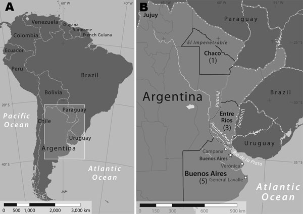 Confirmed and suspected cases of Rickettsia parkeri rickettsiosis, Argentina. The box (A) enlarged in panel (B) shows the extent of the area in which Argentinean provinces, representing patient exposure locations to ticks, are labeled and highlighted. A previous study (10) identified ticks collected from the Paraná Delta near the city of Campana. Numbers of suspected and confirmed cases of R. parkeri rickettsiosis, by province during 2004–2009, are shown in parentheses. The national capital city