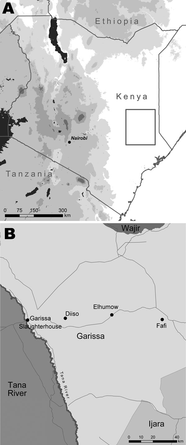 Location of Garissa District (A, box) in North Eastern Province, Kenya, and tick collection sites (B).