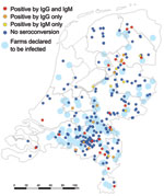 Thumbnail of Residential location of 246 culling workers who were seronegative in December 2009 and their serostatus in June 2010 with location of 89 farms declared to be infected (by PCR-positive bulk-milk monitoring) in 2009 and 2010, the Netherlands. Ig, immunoglobulin. Seroconversion detected by ELISA was confirmed by immunofluorescence assay for 40 persons (38 [95%] at titers >128 and 2 [5%] at titers of 32).