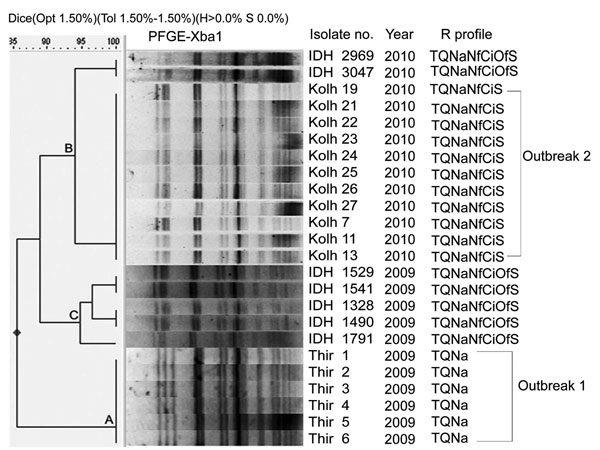 Digested pulsed-field gel electrophoresis (PFGE) profiles of Shigella sonnei outbreak isolates, India (Thiruvananthapuram, Kerala; Kolhapur, Maharashtra), by cluster analysis and comparison with sporadic isolates (IDH). Thir, isolates from Thiruvananthapuram, Kerala; Kolh, isolates from Ispurli, Shiroli Taluk, Kolhapur district, Maharashtra; IDH, isolates from Kolkata, West Bengal; R, resistance; T, tetracycline (30 µg); Q, co-trimoxazole (25 µg); Na, nalidixic acid (30 µg); Nf, norfloxacin (10