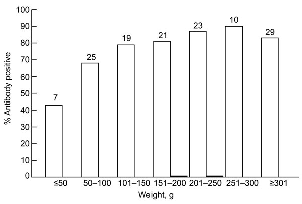 Relationship between prevalence of antibodies against hepatitis E virus (HEV) and weight of Rattus norvegicus rats trapped in Los Angeles, California, USA. Rats reach sexual maturity at a weight of ≈150–200 g. White bars indicate IgG, and black bars indicate IgM. Numbers at the top of each bar indicate sample size.