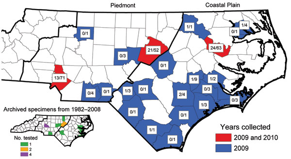 Distribution of Rickettsia parkeri–infected Amblyomma maculatum ticks collected in North Carolina, USA, during 2009−2010 and in archived specimens (inset). Numbers indicate total number positive for R. parkeri by PCR/total number tested in that county.