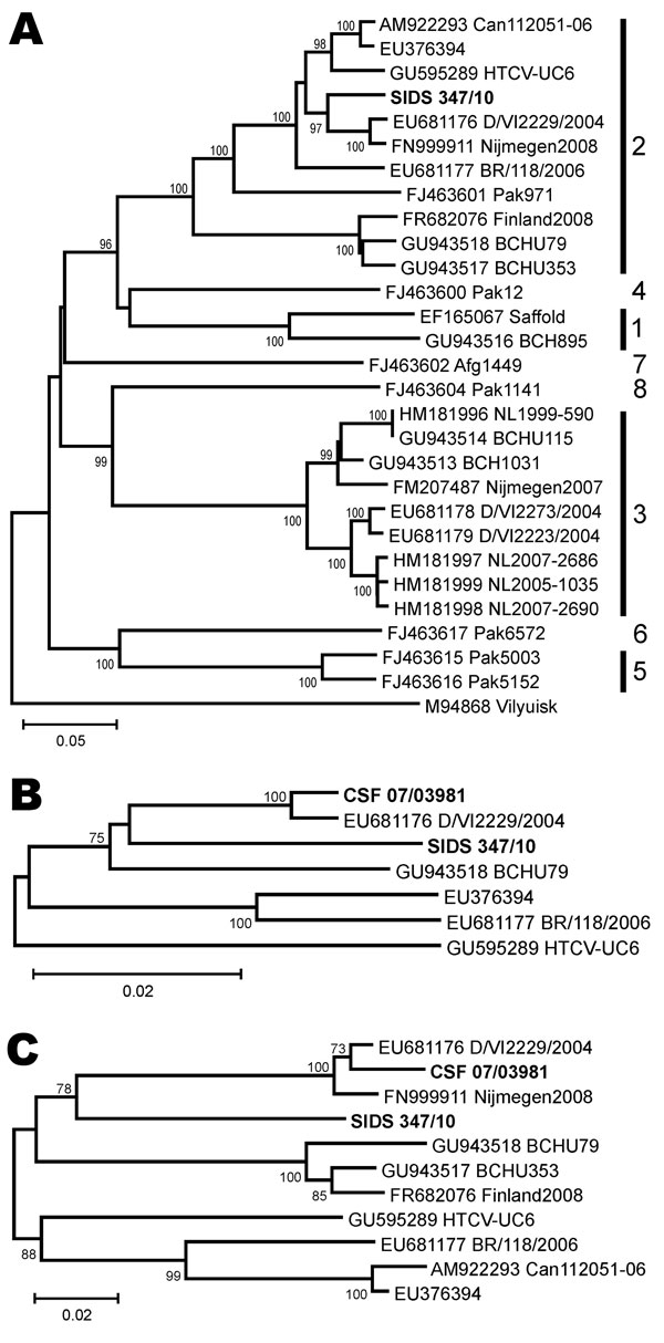 Human cardiovirus phylogeny including novel viruses from myocardial tissue and cerebrospinal fluid. A) The 798-nt complete viral protein (VP) 1 phylogeny, with genotypes indicated to the right. Vilyuisk virus was used as an outgroup. B) The 802-nt partial 5′ untranslated region phylogeny of genotype 2 human cardioviruses. C) The 489-nt complete leader, complete VP4 and partial VP2 phylogeny of genotype 2 human cardioviruses. Neighbor-joining phylogenies were calculated with MEGA5 (www.megasoftwa