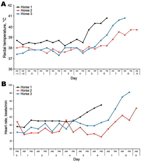 Rectal temperatures (A) and heart rates (B) of each horse after experimental infection with Hendra virus, Australia. Data were collected by using an electronic monitor 2×/d, along with comments on general demeanor. Data were used to determine a humane endpoint for each animal.